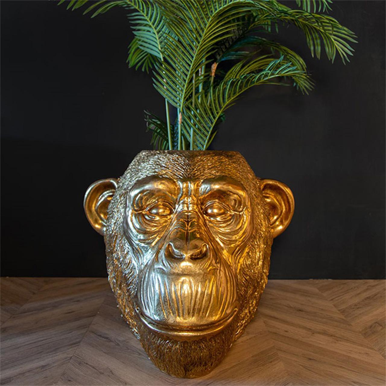 Pflanzer Miley Monkey